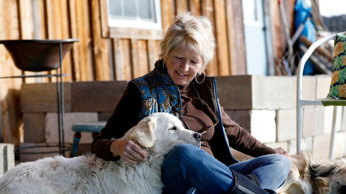 Tenencia de animales domésticos en personas mayores